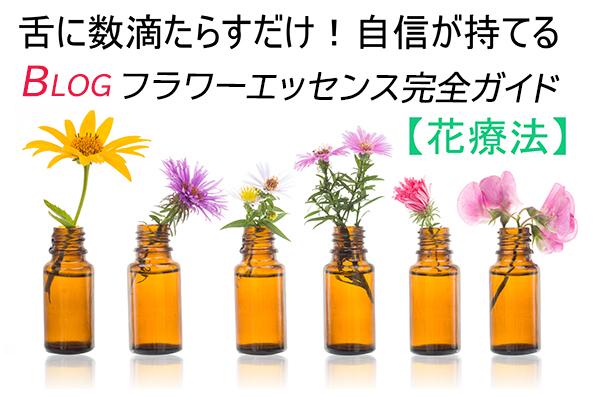花と天使の癒しブログ